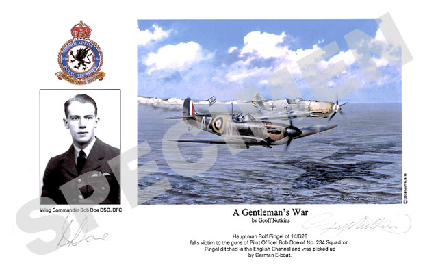 Wing Commander Bob Doe : A Gentleman's War