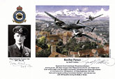 Wing Commander Thomas F.Neil - Rooftop Pursuit - Pilot Portrait print